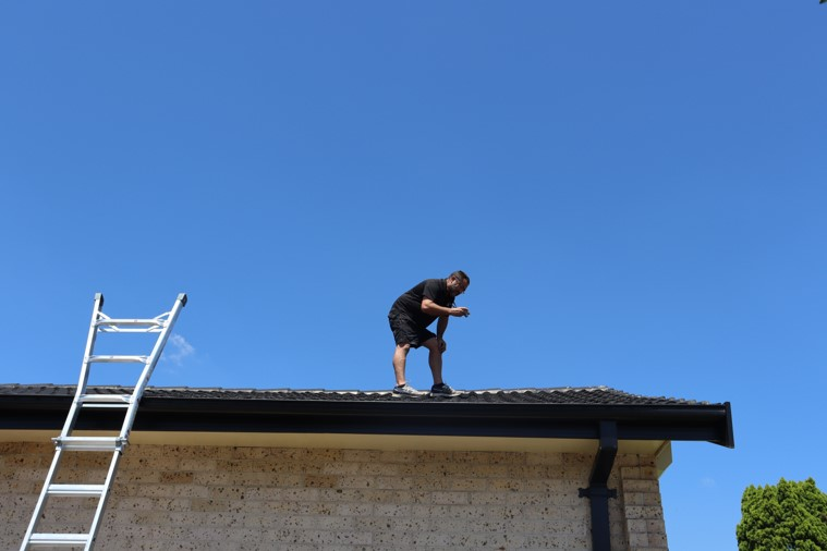 building inspections roof